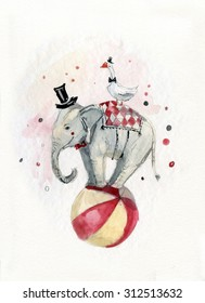 circus elephant on the ball and goose