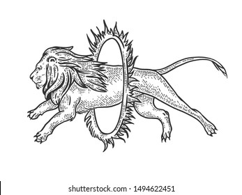 Circus lion jumps into ring of fire sketch engraving raster illustration. Tee shirt apparel print design. Scratch board style imitation. Black and white hand drawn image.