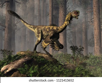 Citipati was a oviraptor theropod, a bird-like dinosaur that lived during the Cretaceous period in Asia.  This one is in a jungle.  3D Rendering