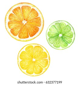 Citrus slice fruits watercolor hand drawn illustration. Orange, lemon, lime isolated on white background. For the design of invitations, greeting cards, wallpapers, banners, web and print
