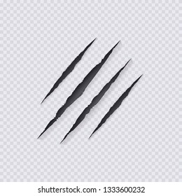 Claws Scratches Illustration,Isolated on Transparent Background, Wild Animals Claws Scratching.