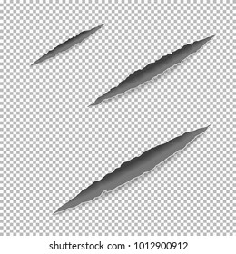 Claws Scratches On Paper With Ripped Edges Shadow Transparent Background Graphic Concept For