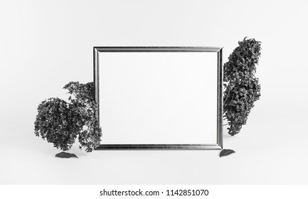 10x8 Inch Frame Images, Stock Photos & Vectors | Shutterstock