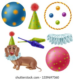 clipart circus, dog in clown costume, circus equipment