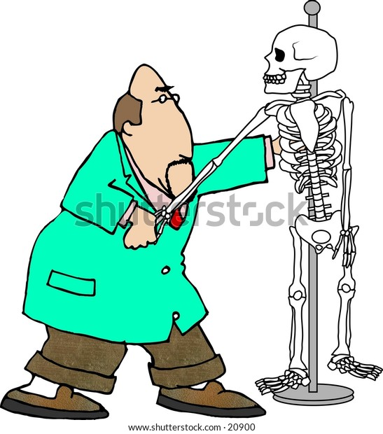 Clipart illustration of a Chiropractor pulling the bones of a skeleton.
