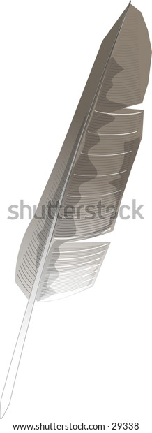 Clipart illustration of a feather.