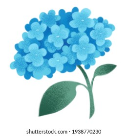 Clipart watercolor blue flower. Gartensia, lilac, hibiscus. Boho vintage style. Cute illustration in cartoon childish style. The image is isolated on a white background.