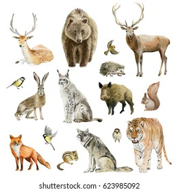 Clipboard set of watercolor hand drawn group of animal cliparts - birds, predators and preys, grass-feeding and rodents