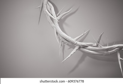 Close up Crown of Thorns 3D Rendering Empty Space