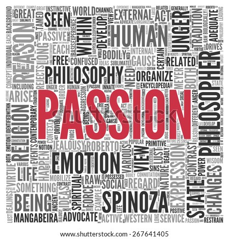 different word for passion