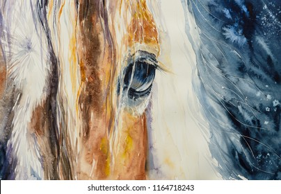 Close-up of a beautiful horses eye.Picture created with watercolors.