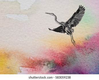 Closeup Color And Texture Of Watercolor On Paper With Drawing Flying Purple Heron Bird