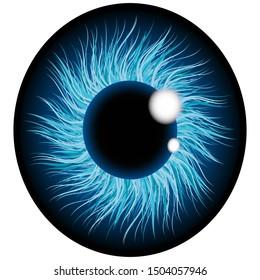 Close-up of human eye, cornea, retina, pupil. Blue 3d iris. Eyeball icon design isolated on transparent background. Realistic illustration