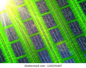 Close-up of a leaf with solar panels concept energy. 3d illustration