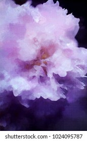 Closeup of a peony turned into an abstract painting in purple tones