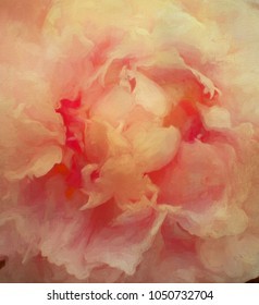 Closeup of a peony turned into an abstract digital painting