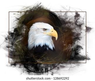 A closeup portrait of a Bald Eagle.