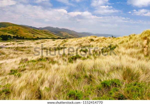Coastal meadow with windblown grass at Point Reyes National Seashore, northern California, USA, at end of May, with digital oil-painting effect, for coastal, conservation, and recreational motifs
