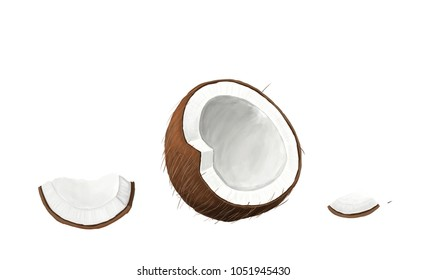 Coconut with green leaves isolated on white background. Raster illustration