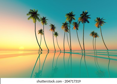 coconut palms at turquoise tropical sunset over calm sea