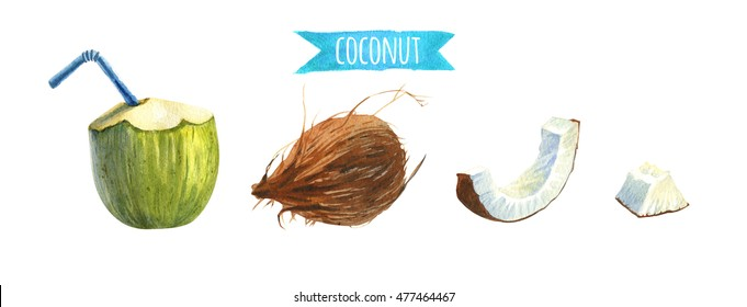 Coconut set, watercolor illustration with clipping paths
