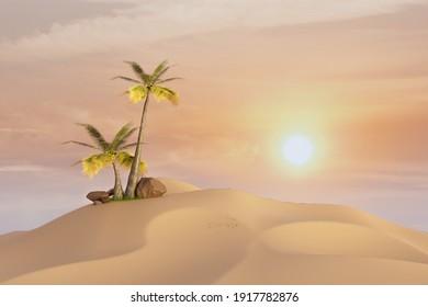 coconut tree in desert with sunset light, 3d illustration rendering