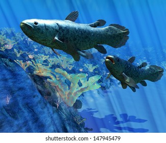 Coelacanth Fish - The Coelacanth fish was believed to be extinct but were discovered in 1938 to still be living.