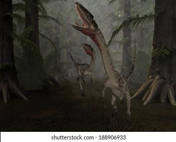 Coelophysis - 3D Dinosaur