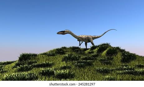 coelophysis in grassland