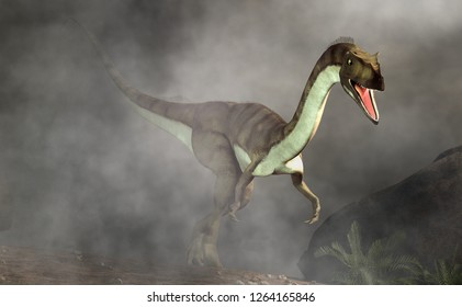 Coelophysis, one of the earliest dinosaurs, was a carnivorous theropod.  Here it stalks out a dense fog and towards the viewer. 3D Rendering