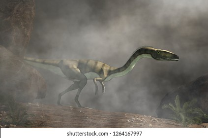 Coelophysis, one of the earliest dinosaurs, was a carnivorous theropod.  Here it stalks through a dense fog. 3D Rendering