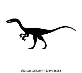 Coelophysis silhouette dinosaur jurassic prehistoric animal. JPG illustration.
