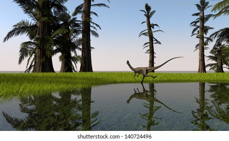 coelophysis in swamp meadow