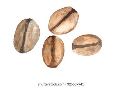 Coffee beans , watercolor illustrator