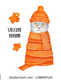 Cold weather and autumn time card design. Cosy kitten, warm clothing, colorful seasonal leaves, love heart and text phrase. Hand drawn water color graphic paint on white. Humorous, inspirational art.