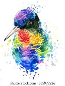 colibri. exotic bird watercolor illustration.