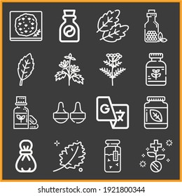 Collection of 16 phrases lineal icons included pharmaceutical, homeopathy, remedy, focaccia, herb, leaf, medicine, herbs, massage, basil