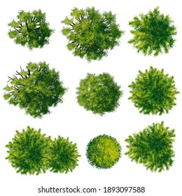 Collection of abstract watercolor green tree top view isolated on white background  for landscape plan and architecture layout drawing, elements for environment and garden, green grass illustration