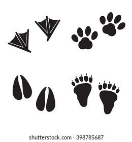 Collection of animal foot prints.