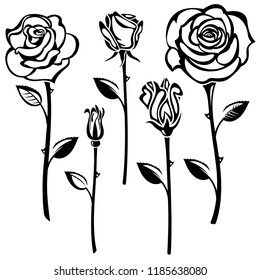 Collection of black and white roses