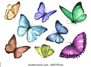 A collection of colorful butterflies. Painted with watercolor on paper. Handmade illustration.