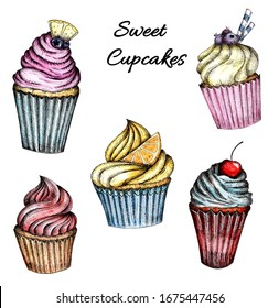 A collection of Colorful cupcakes with cream and berries. Watercolor hand drawing isolated on a white background.