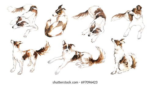 Collection of the cute dog on white background for calendar, banner or placard. Traditional chinese ink painting.