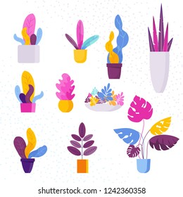 Collection of decorative Exotic tropical houseplants in a flower pot isolated on white background. Bundle of trendy plants, Set of natural home decorations. Flat colorful illustration.