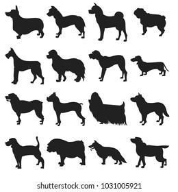 Collection of dogs silhouette. Friend animal and beagle, illustration