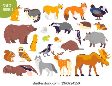 Collection of forest animals and birds: bear, fox, hare, owl isolated on white background. Flat hand drawn style. Good for children book illustration, alphabet, woodland banner, zoo emblem etc.