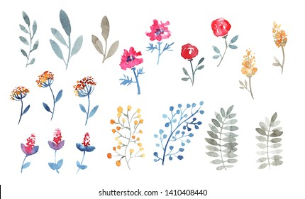 Collection of garden flowers and branches. Palegrey, blue, red, rose, orange colors.  Loose watercolor
