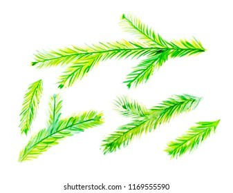 Collection of Green Watercolor Christmas Tree Branches Isolated on White Background. Set of Creative Hand Drawn Spruce Twigs for New Year Illustration or DesignTemplate