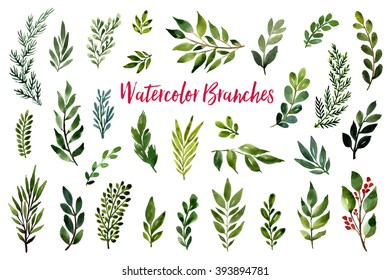 Collection of hand drawn watercolor floral elements: flowers, branches, leaves, wreaths, roses, berries. Can be used for print (home decor, posters, cards) and web (banners, blogs, advertisement).