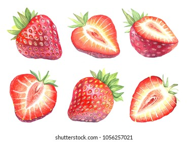 Collection of illustrations of dessert berry in chocolate. Watercolor strawberry in a cut. Isolated picture of fruits on white background. Vegetarian food.